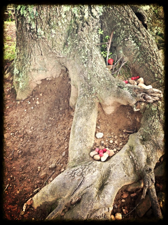 I captured the fairy house that my daughter and friend made, near the strawberry field. It somehow felt like a castle in the sand, and I wanted to preserve it in more than just our memory.