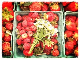 Whimsical berries, fresh from the fields.