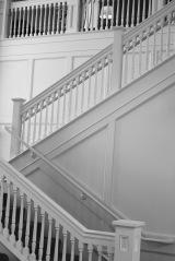 Architecture & Monochrome