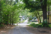 View from the end of my driveway (looking left).